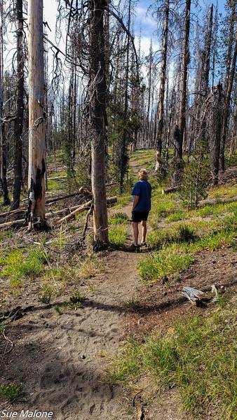 08-18-2020 Boundary Springs Hike-2.jpg