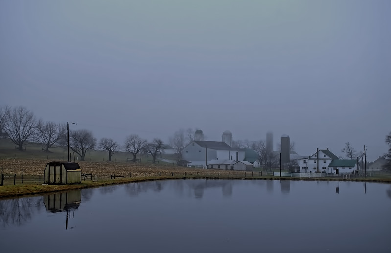 fog - pond and amish farm(p).jpg