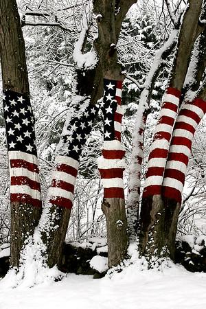 9/11 Memorial Winter