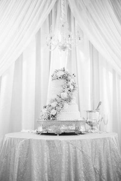 0808_Josh+Lindsey_WeddingBW.jpg