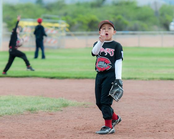 Romeo Baseball