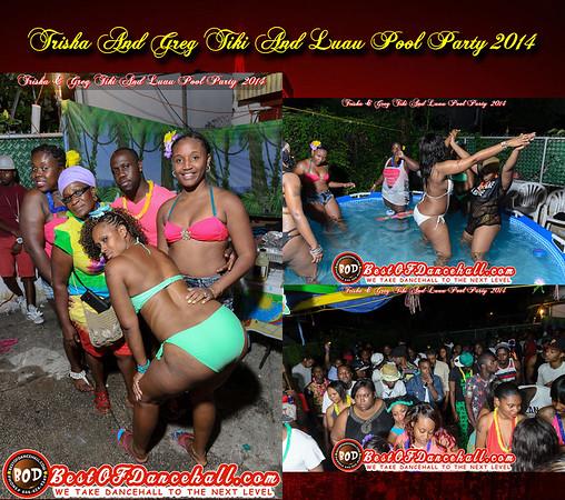 8-9-2014-BRONX-Trisha And Greg Tiki And Luau Pool Party 2014