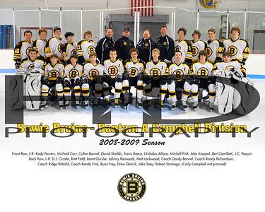 Bowie Ice Hockey 2008-2009