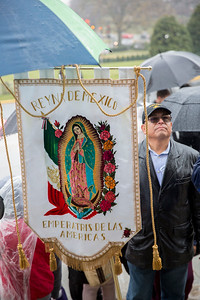 Our Lady of Guadalupe - Walk with Mary