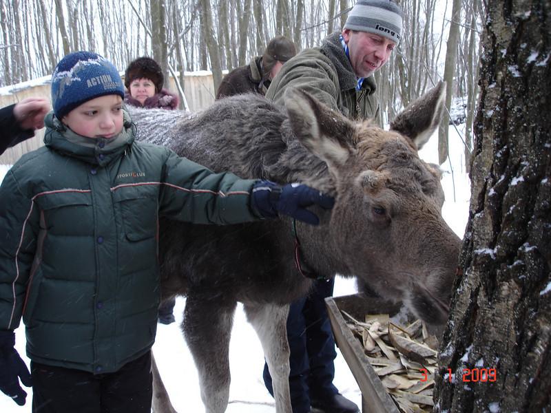 2008-12-31 НГ Кострома 69.JPG