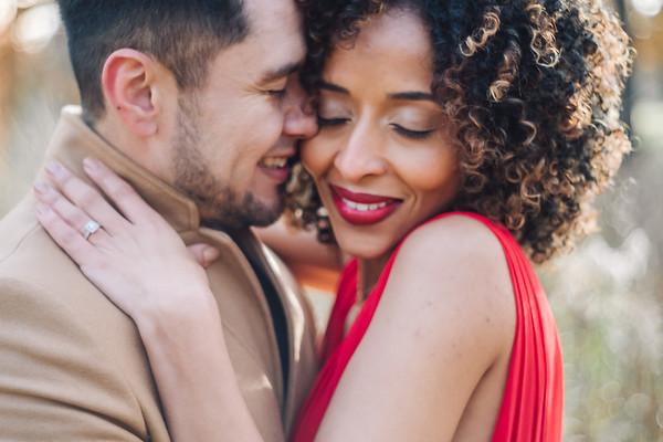 2018-11-14 Eduardo & Bth Engagement