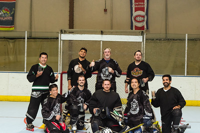 2017 Puck of Anarchy hockey