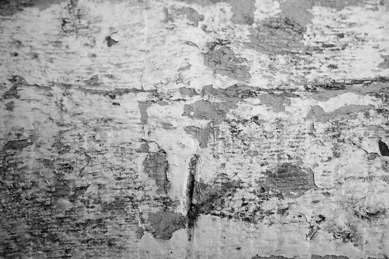 Wood Peeling Paint_4bw.jpg