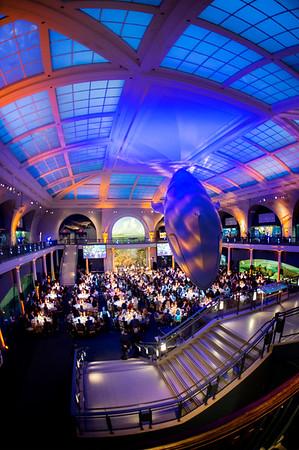 2017 HBSCNY Annual Leadership Dinner