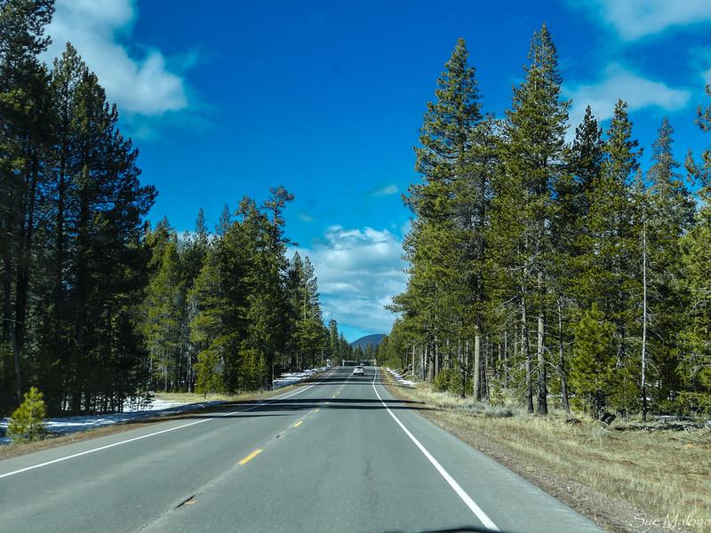 Mt Lassen and Highway 44 (1 of 6).jpg
