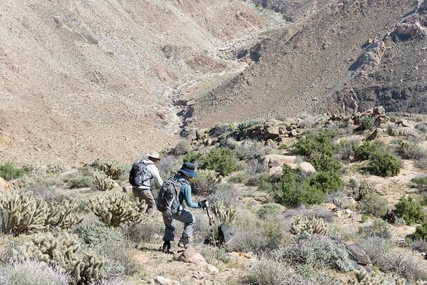 2016-03 Goat Canyon Trestle View