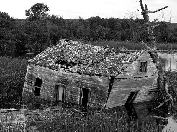 littlehouse2.jpg
