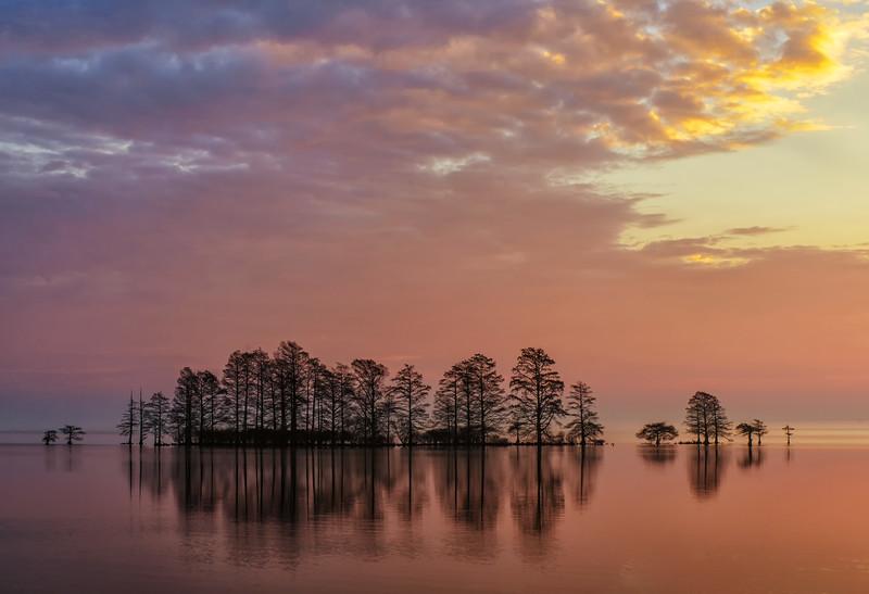 Lake Mattamuskeet Sunrise Three.jpg