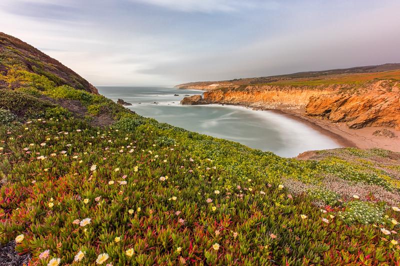 WVWS_California Coast--3.jpg