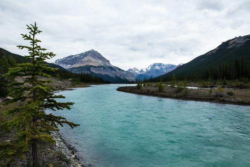 Banff 2016-5641.jpg