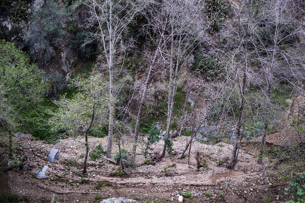 . Fish Canyon Falls trail in Angeles National Forest on Friday, February 27, 2015. Duarte received a $25,000 grant from Los Angeles County to rehabilitate the trail. (Photo by Sarah Reingewirtz/Pasadena Star-News)