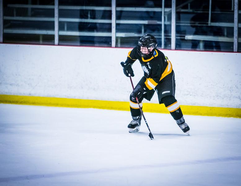 Bruins2-697.jpg