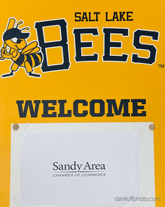 Business After Hours Networking Event - Salt Lake Bees Game - Sandy Area Chamber of Commerce