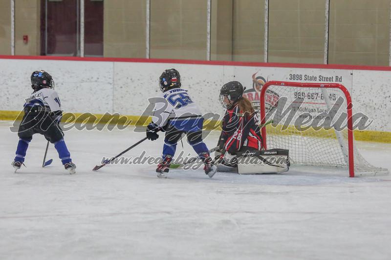 Blizzard Hockey 111719 7311.jpg