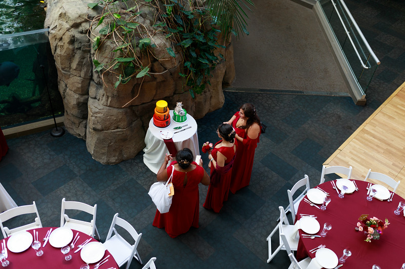 1410-Trybus-Wedding.jpg