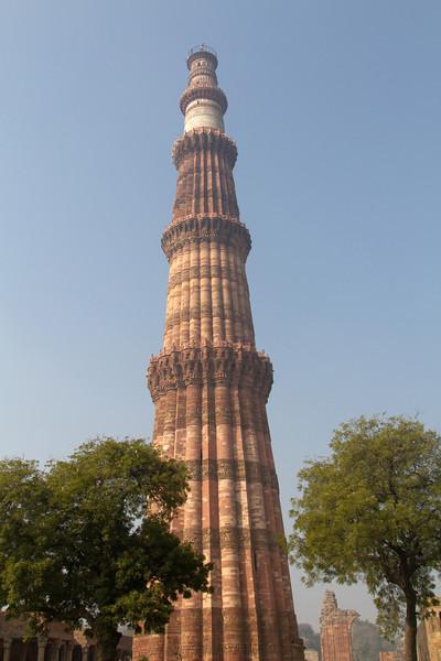 India_2012Feb-5287.jpg