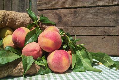 Early Elberta Peach (Kim Elberta)(July Elberta) - Prunus persica sp.