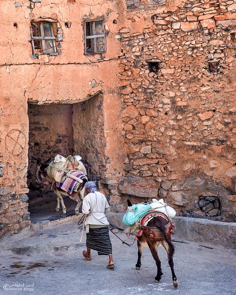 Misfat Al Abryeen - Oman  (13).jpg