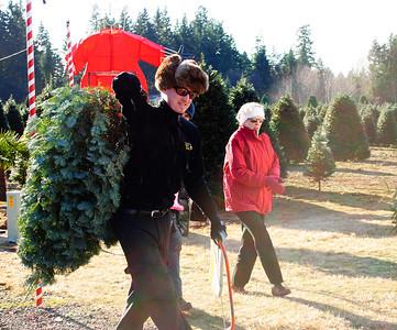 Christmas Tree Hunt 2013