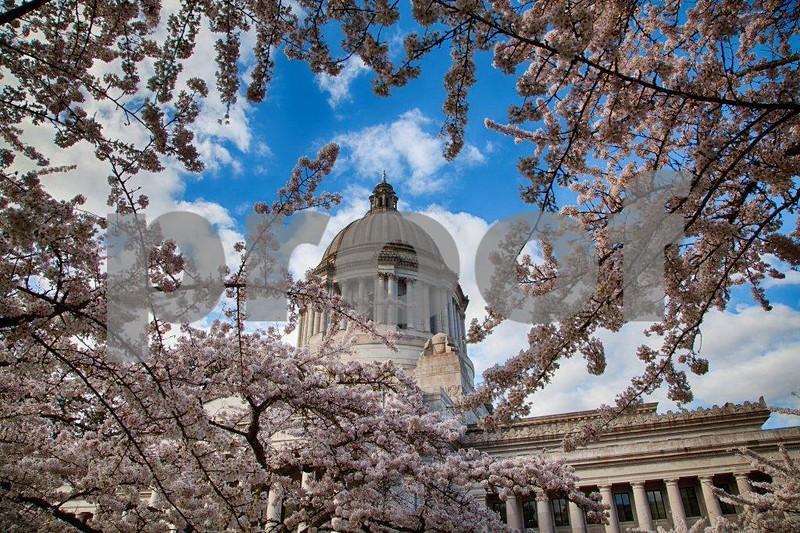 Capitol, spring 3133_HDR.jpg