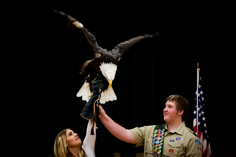 martin eagle-33.jpg