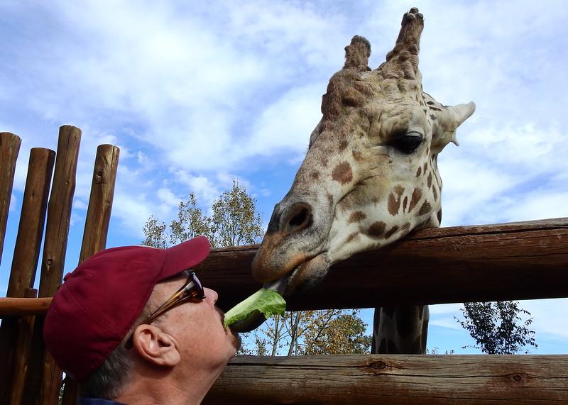 Cheyenne Mtn Zoo 2018 (2373).JPG