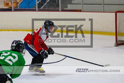 Hockey Clinic 12/13/20