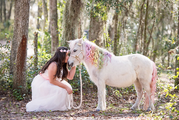 Unicorns Jan 2019 - Gonzalez