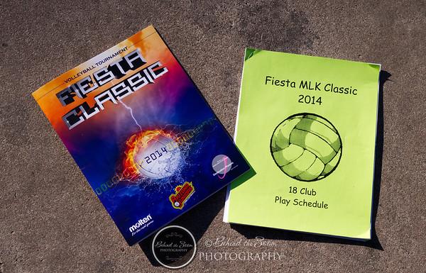 Fiestsa Classic 2014