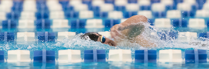 2018_KSMetz_Feb09_SHS Centenial League_Swimming_NIKON D5_2711.jpg