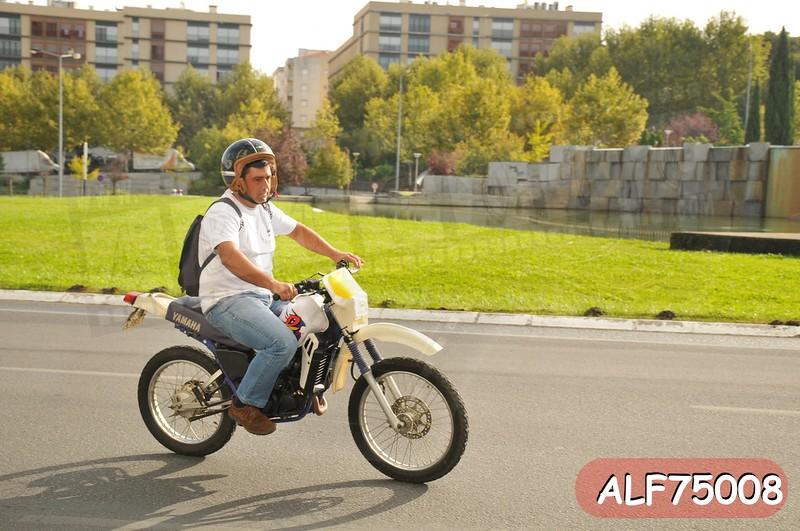 ALF75008.jpg