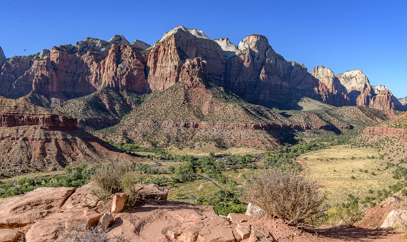 Top of the Watchman Trail