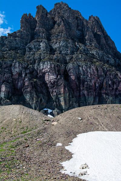 montana010.jpg