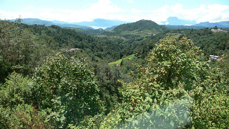 Guatemala 2010  129.jpg