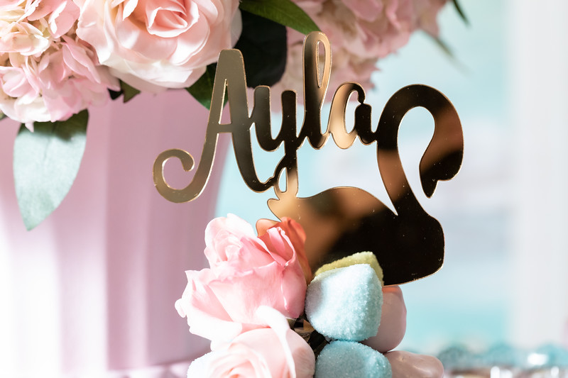 11.23.19 - Ayla's 1st Birthday - -542.jpg