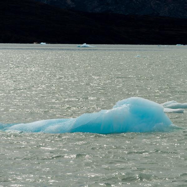 Icebergs in Lake Argentino, Los Glaciares National Park, Santa Cruz Province, Patagonia, Argentina