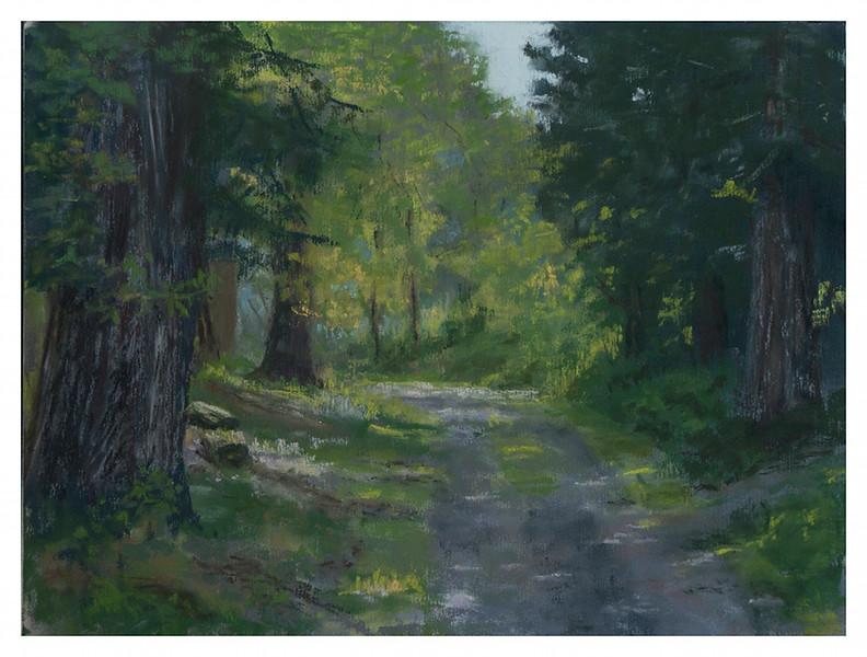 Sunlit Path 9 x 12 (C)