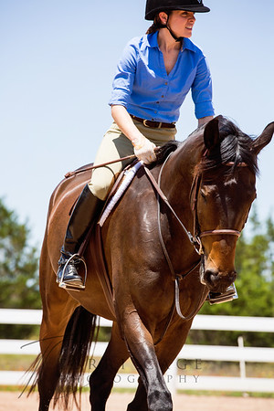 Under Saddle - Non stock breeds