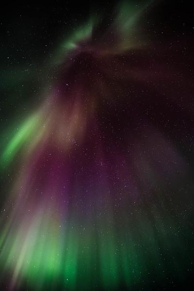 Aurora Drapes I