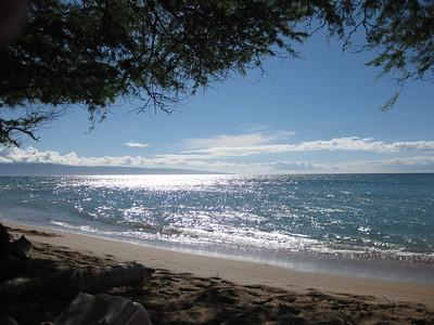 Hawaii 2010 (in process)