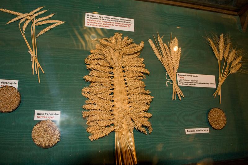Braided grains.