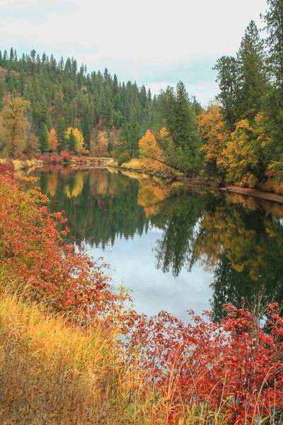 fall 2019 st maries river-1685.jpg