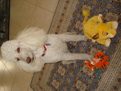 Winnie & Tigger
