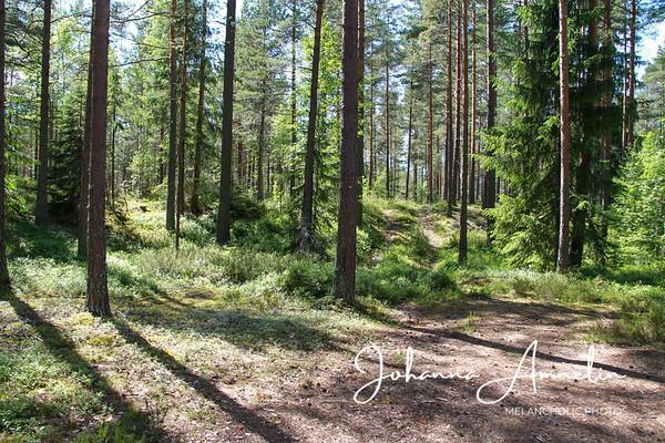 Ancylusjärvi (Muinainen) Koski tl
