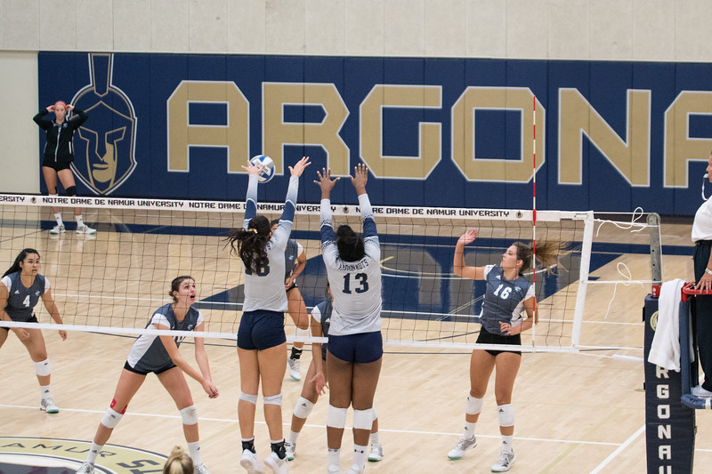 HPU Volleyball-91608.jpg